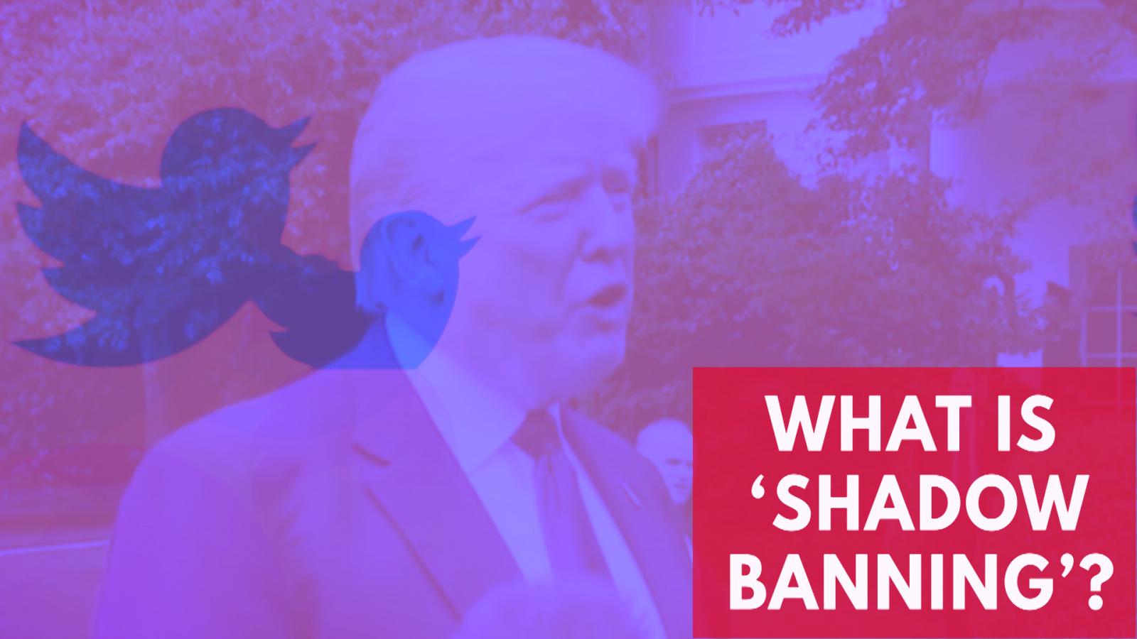 What Is Shadow Banning